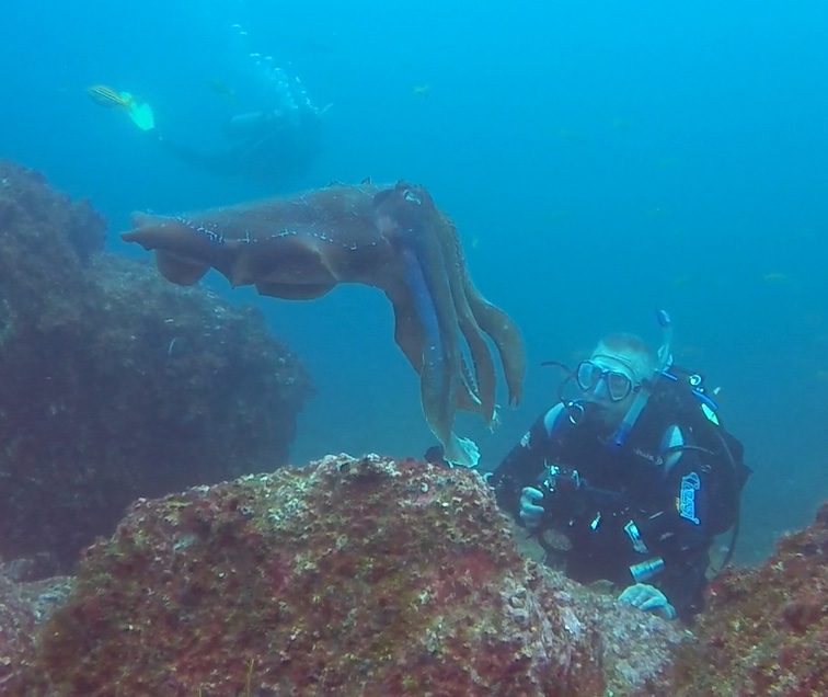 Craig and Giant Cuttlefish